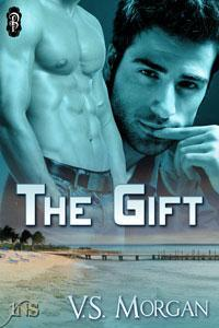 The Gift by V.S. Morgan