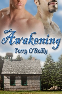 Awakening by Terry O'Reilly