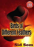 Birds of different feathers by Sid Som
