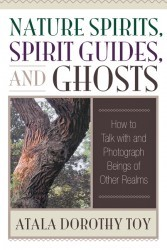 Nature Spirits, Spirit Guides, and Ghosts by Atala Dorothy Toy