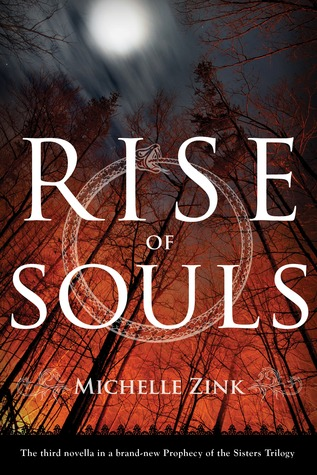 Rise of Souls by Michelle Zink
