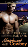 Misplaced Cowboy (Foreign Affairs, #2)