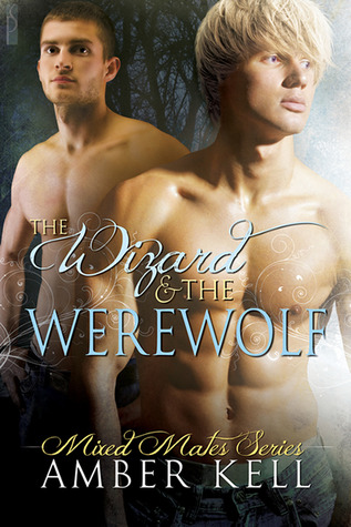 The Wizard & The Werewolf by Amber Kell