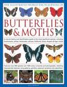 The Illustrated World Encyclopedia of Butterflies & Moths: A Natural History and Identification Guide to the Most Signifigant Species, Including Swallowtails, Hairstreaks, Yellows, Fritillaries, Blues, Skippers and Tiger Moths