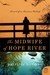 The Midwife of Hope River: A Novel of an American Midwife (Kindle Edition)