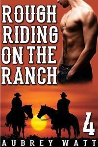 Rough Riding on the Ranch (Gay Cowboys, #4)