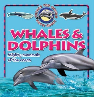 10 Things You Should Know About Whales & Dolphins (100 Facts On)