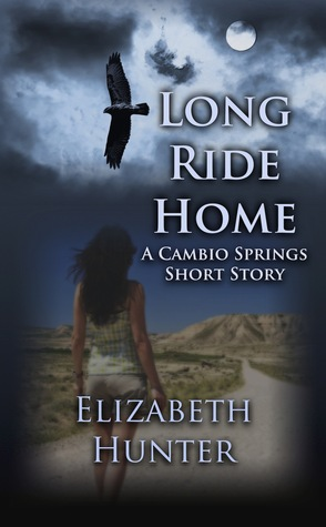 Long Ride Home by Elizabeth   Hunter