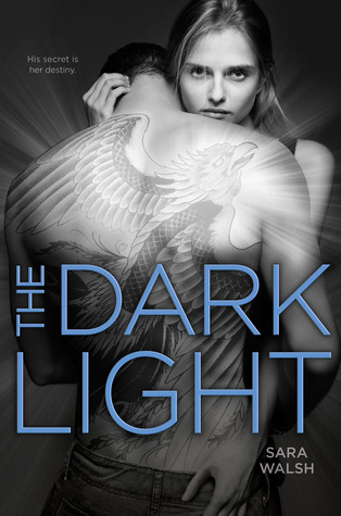 The Dark Light by Sarah Walsh