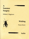 A Summer Surgery / Waiting