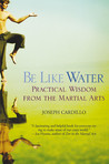 Be Like Water: Practical Wisdom from the Martial Arts