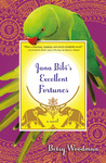 Jana Bibi's Excellent Fortunes: A Novel