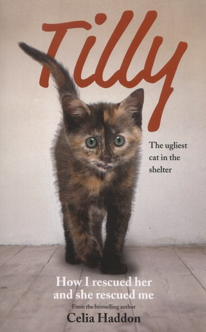 Tilly by Celia Haddon