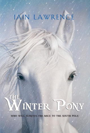 The Winter Pony