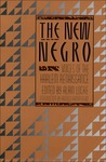 The New Negro by Alain LeRoy Locke