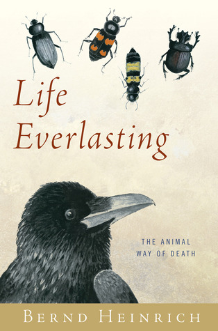Review Life Everlasting: The Animal Way of Death PDF