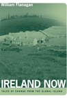 Ireland Now: Tales of Change from the Global Island