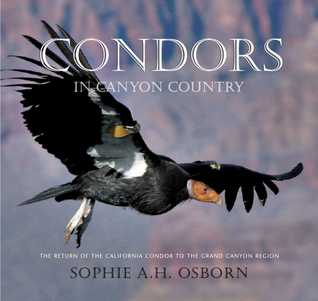Condors in Canyon Country by Sophie A.H. Osborn