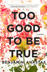 Too Good to Be True by Benjamin Anastas