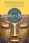 Buddha's Brain by Rick Hanson