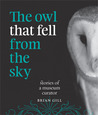 The Owl that Fell from the Sky - Stories of a Museum Curator