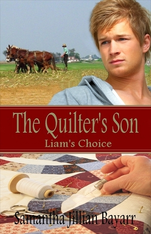 The Quilter's Son: Book One: Liam's Choice (The Quilter's Son #1)