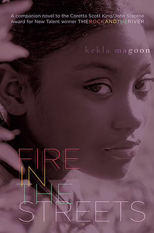 Fire in the Streets (The Rock and the River, #2)