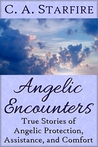 Angelic Encounters: True Stories of Angelic Protection, Assistance, and Comfort