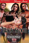 Black Storm (Panther Key, #1)