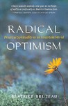Radical Optimism: Practical Spirituality in an Uncertain World