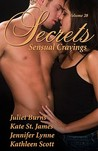 Secrets Volume 28 by Juliet Burns