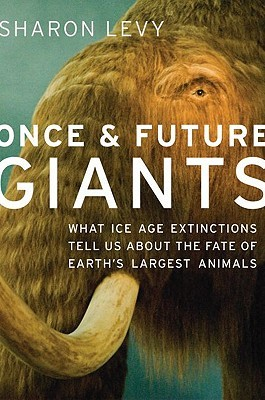 Once & Future Giants by Sharon Levy