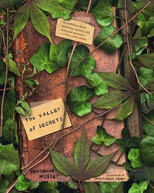 The Valley of Secrets by Charmian Hussey