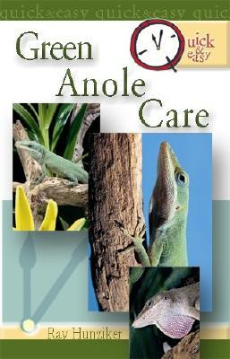 Quick &amp; Easy Green Anole Care