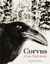 Corvus: A Life with Birds