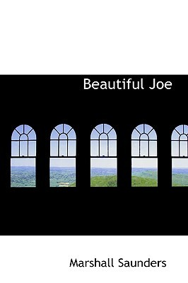 Beautiful Joe