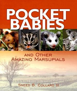 Pocket Babies: And Other Amazing Marsupials