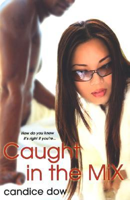 Caught in the Mix by Candice Dow