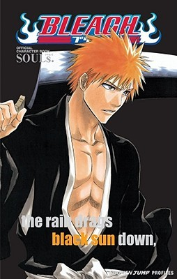 Bleach SOULs. Official Character Book