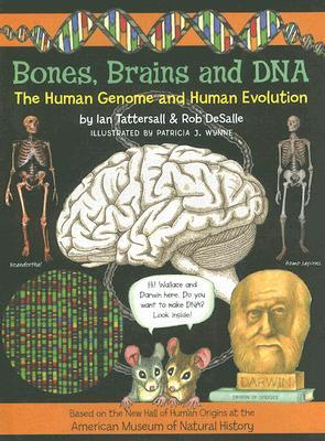 Bones, Brains and DNA by Ian Tattersall