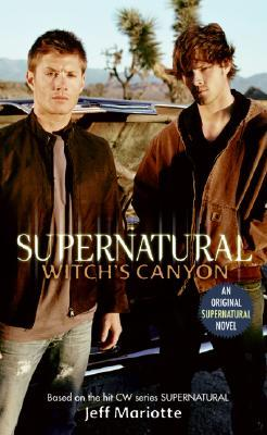 supernatural book reviews