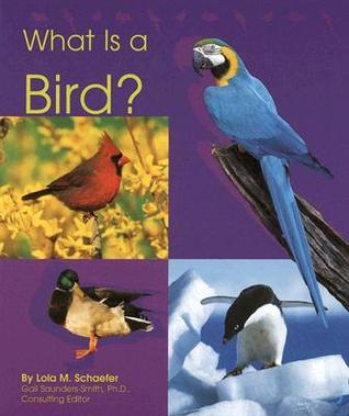What Is a Bird? by Lola M. Schaefer