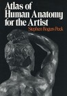 Atlas of Human Anatomy for the Artist by Stephen Rogers Peck