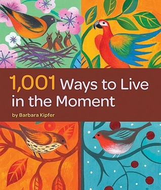 1,001 Ways to Live in the Moment by Barbara Ann Kipfer