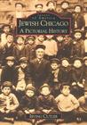 Jewish Chicago: A Pictorial History (Images of America: Illinois)