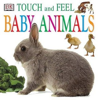Baby Animals by Jennifer Quasha