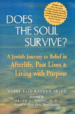 Does the Soul Survive? by Elie Kaplan Spitz