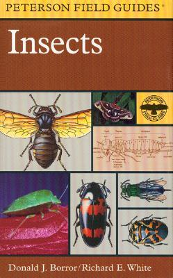 A Field Guide to Insects by Donald J. Borror