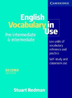 english vocabulary in use pdf