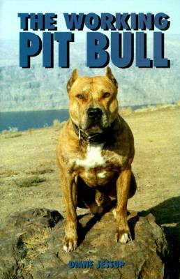 Working Pit Bull by Diane Jessup
